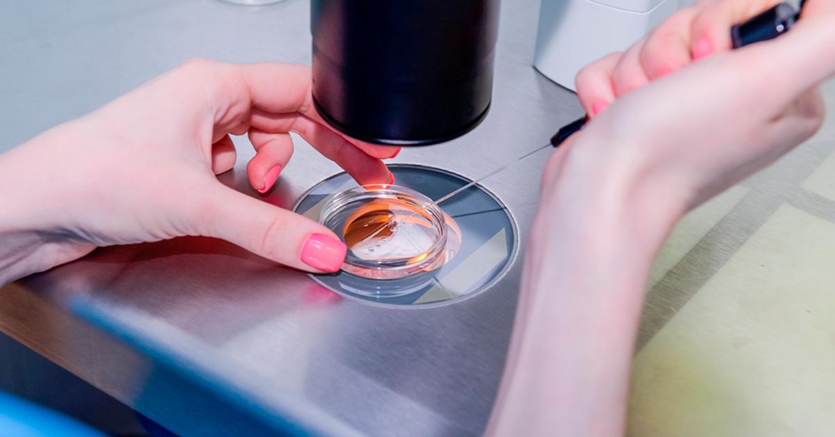 Fertilização in vitro e inseminação artificial: qual a principal diferença?